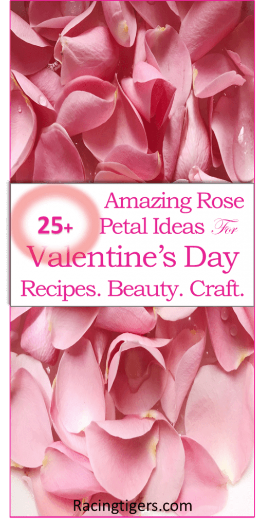 25 + Rose Petal Ideas for valentine day. Rose petal Recipes. Beauty Rose petal Craft, #rosepetal, #valentinesSpecialgift #Valentinegift #rosepetalideas #rosepetalcraft